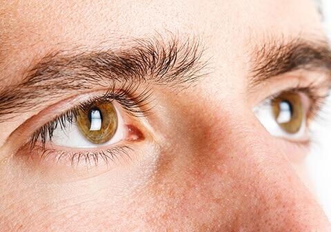 Close up man's brown eyes